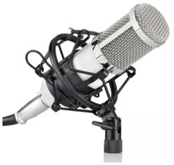 Микрофон FZONE BM-800